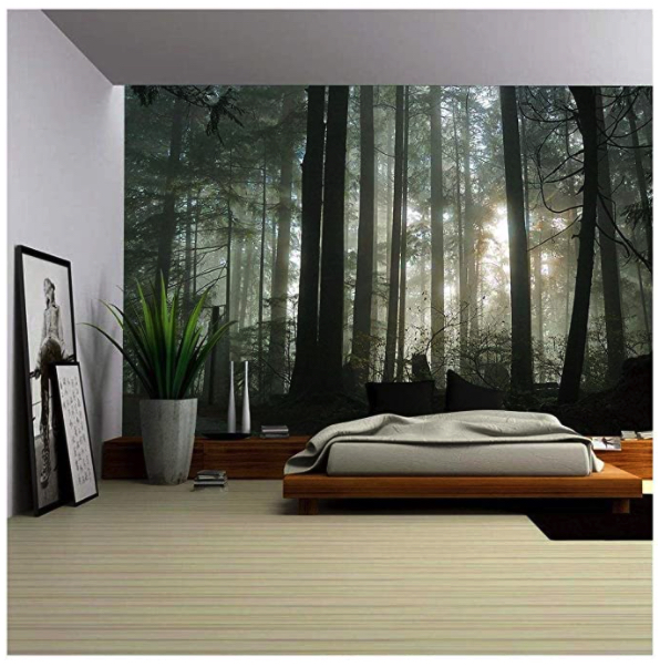 Outdoor Themed Room for Teenagers_Forrest Wallpaper