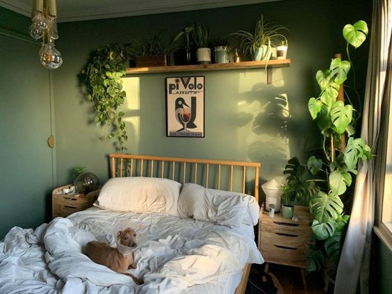 green shades for bedroom